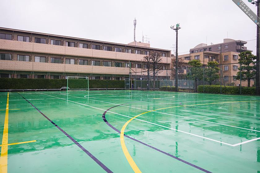 higako_sports_023
