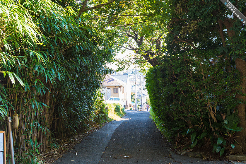 hillside_terrace_yokohama_020