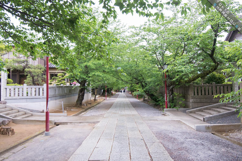 043nakayama(outlook)