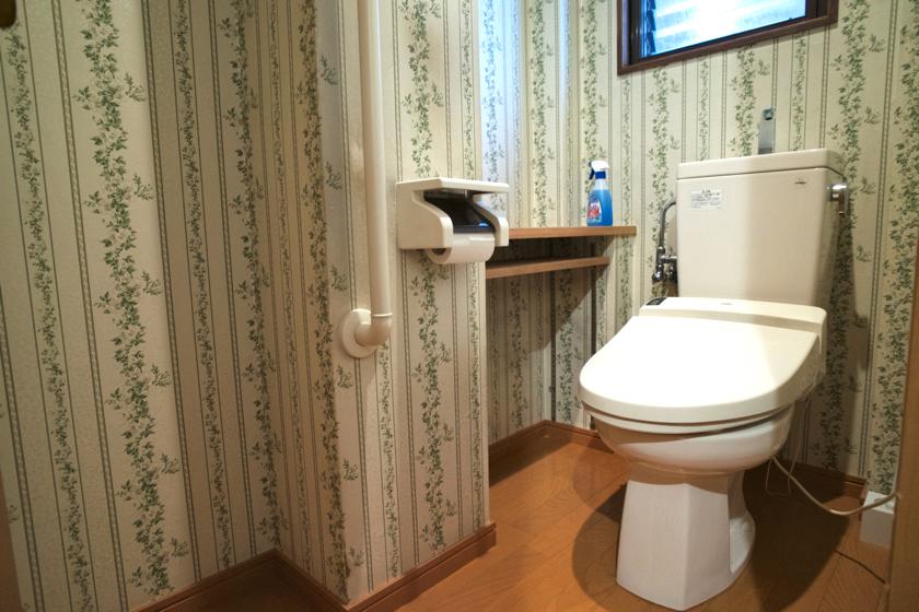 2_C1_sharehapi_toilet